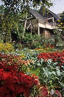 """Asie/Thaïlande/Khao Khor : La ferme-auberge """"Khao Khor Thale Phu Resort"""" et son jardin de plantes médecinales et aromatiques"""