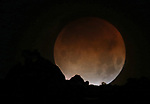 The super blue blood moon sets over the Sierra in Gardnerville, Nev., on Tuesday, Jan. 30, 2018. <br /> Photo by Cathleen Allison/Nevada Momentum