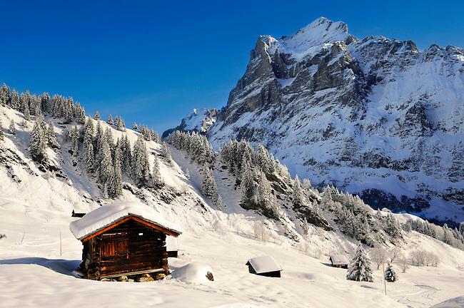 Mountain chalet in winter looking towards the wetterhorn mountain. Grindelwald, Swiss Alps