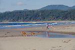 Olympic National Park, Shi Shi Beach, Point of the Arches, Washington State, Pacific Northwest, woman hiking on the beach, deer,  Pacific Ocean, Northwest coast, Olympic Peninsula, North America, USA,.
