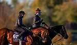 November 2, 2020: Leinster, trained by trainer George R. Arnold II, exercises in preparation for the Breeders' Cup Turf Sprint at  Keeneland Racetrack in Lexington, Kentucky on November 2, 2020. Alex Evers/Eclipse Sportswire/Breeders Cup