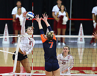 Arkansas Junior Maggie Cartwright (11) goes up for spike against Auburn Junior Rebekah Rath (7) on Sunday, Oct. 10, 2021, during play at Barnhill Arena, Fayetteville. Visit nwaonline.com/211011Daily/ for today's photo gallery.<br /> (Special to the NWA Democrat-Gazette/David Beach)