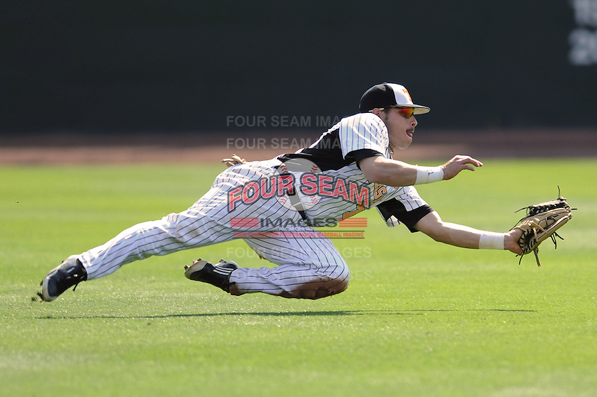 Chris Fritts #7 of the Tennessee Volunteers makes a diving catch at Lindsey Nelson Stadium against the the Manhattan Jaspers on March 12, 2011 in Knoxville, Tennessee.  Tennessee won the first game of the double header 11-5.  Photo by Tony Farlow / Four Seam Images..