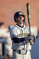 Michigan Wolverines first baseman Jimmy Obertop (8) at bat during the NCAA baseball game against the Illinois Fighting Illini at Fisher Stadium on March 19, 2021 in Ann Arbor, Michigan. Illinois won the game 7-4. (Andrew Woolley/Four Seam Images)