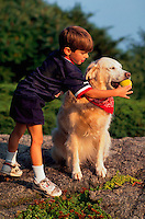 A young boy attempts the get a Golden Retriever dog to give uo his ball.