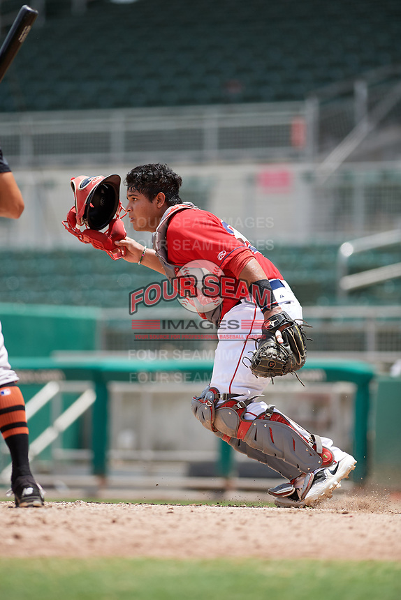 GCL Red Sox catcher Carlos Pulido (23) pursues a loose ball during a game against the GCL Orioles on August 9, 2018 at JetBlue Park in Fort Myers, Florida.  GCL Red Sox defeated GCL Orioles 10-4.  (Mike Janes/Four Seam Images)