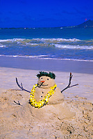 In Hawaii a sandman, rather than a snowman, is seen with a carrot nose and haku and yellow flower lei on Kailua beach at Christmas time