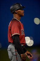 AZL Dbacks coach Darrin Garner (2) coaches third base during an Arizona League game against the AZL Cubs 2 on June 25, 2019 at Sloan Park in Mesa, Arizona. AZL Cubs 2 defeated the AZL Dbacks 4-0. (Zachary Lucy/Four Seam Images)