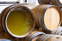 Oak barrels for fermenting and aging white wine. One barrel has the wooden end removed and replaced by a plexi glass sheet to allow inspection of the wine or must inside.  Domaine Yves Cuilleron, Chavanay, Ampuis, Rhone, France, Europe