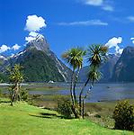 New Zealand, South Island, Milford Sound (Fjordland): View across Fjord to Mitre Peak | Neuseeland, Suedinsel, Milford Sound (Fjordland): Blick ueber den Fjord zum Mitre Peak
