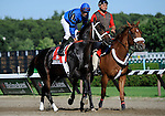 09 July 30: Soundman prior to the 95th running of the grade 2 Sanford Stakes for two year olds at Saratoga Race Track in Saratoga Springs, New York.