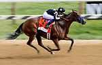 SARATOGA SPRINGS, NY - AUGUST 25:Marley's Freedom  #7, ridden by jockey Mike Smith, wins the Ballerina Stakes on Travers Stakes Day at Saratoga Race Course on August 25, 2018 in Saratoga Springs, New York. (Photo by Scott Serio/Eclipse Sportswire/Getty Images)