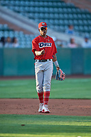 Jose Verrier (12) third baseman of the Orem Owlz during the game against the Ogden Raptors at Lindquist Field on September 3, 2019 in Ogden, Utah. The Raptors defeated the Owlz 12-0. (Stephen Smith/Four Seam Images)