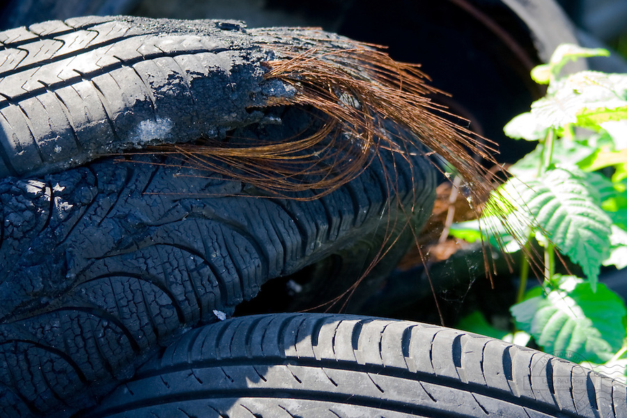 Closeup of tires with the copper showing