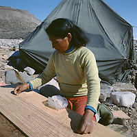 Sofie Eipe making Ivalu from sinew of a narwhal, Monodon monoceros, she will use it as thread to sew skins. Qaanaaq. NW Greenland, Arctic