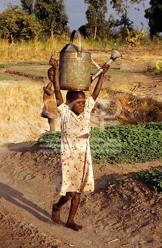 Tembe, Tanzania; girl carrying watering can on her head from a deep well to water crops.