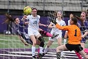 Rogers at Fayettevillle girls soccer 4/16/2019
