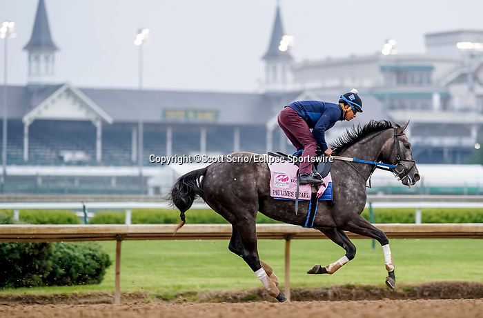 April 25, 2021: Pauline's Pearl, trained by trainer Steve Asmussen, exercises in preparation for the Kentucky Oaks at Churchill Downs on April 25, 2021 in Louisville, Kentucky. Scott Serio/Eclipse Sportswire/CSM