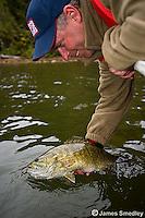 Smallmouth bass fishing