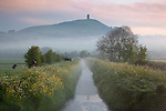 Great Britain, England, Somerset, Glastonbury: Dawn mist below Glastonbury Tor with tower of ruin of medieval church of St Michael atop 525 foot high summit