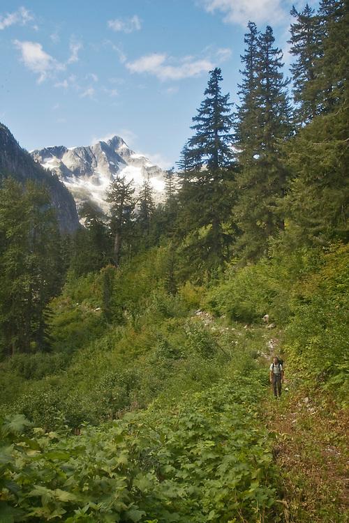 Hiking, Hiker, Little Beaver trail, Mount Whatcom, Picket Range, North Cascades National Park, wilderness, Cascade Mountains, Washington State, Pacific Northwest, United States, Scott McCredie, released,
