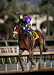 January 30, 2021: Express Train and Juan Hernandez wins the San Pasqual Stakes Stakes at Santa Anita Park in Arcadia, California on January 30, 2021. Evers/Eclipse Sportswire/CSM