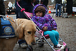 NEWTOWN, CT-17 December 2012-121712LW02 - Oneysha Visuma, 2, of Bristol, watches therapy dog at the site of a makeshift memorial in Newtown at the corner of Washington Avenue and Church Hill Road Monday. Laraine Weschler