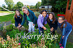 Mairead Kerrisk Green school co ordinator working in the school garden with Nicole, Whitney Hannah and Faye as part of their global citizenship food and diversity project in St Olivers NS Killarney on Monday