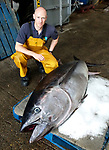Pictured:  Nick Rogers a Sussex Inshore Fisheries and Conservation Authority Fisheries & Conservation Officer with the bluefin tuna.<br /> <br /> An enormous, rare fish which is one of the world's most expensive species has washed up on the English coast.  The 'remarkable' giant tuna is a delicacy in Japan and one once sold at a record £2.5 million at auction.<br /> <br /> The 180kg (28 stones 4lbs) tuna mysteriously made its way into Chichester Harbour, West Sussex, where it was found dead.  SEE OUR COPY FOR DETAILS.<br /> <br /> Please byline: Sussex IFCA/Solent News<br /> <br /> © Sussex IFCA/Solent News & Photo Agency<br /> UK +44 (0) 2380 458800