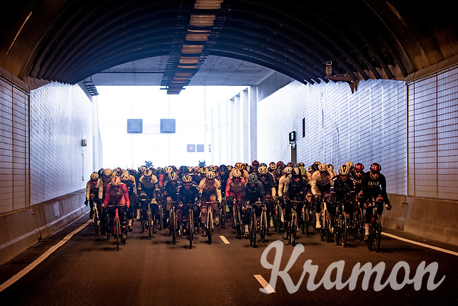 peloton passing through the 6,6km long Westerscheldetunnel (Western Scheldt Tunnel) straight after leaving Terneuzen<br /> <br /> 109th Scheldeprijs 2021 (ME/1.Pro)<br /> 1 day race from Terneuzen (NED) to Schoten (BEL): 194km<br /> <br /> ©kramon