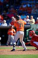 Baltimore Orioles second baseman Zach Vincej (71) at bat during a Grapefruit League Spring Training game against the Philadelphia Phillies on February 28, 2019 at Spectrum Field in Clearwater, Florida.  Orioles tied the Phillies 5-5.  (Mike Janes/Four Seam Images)