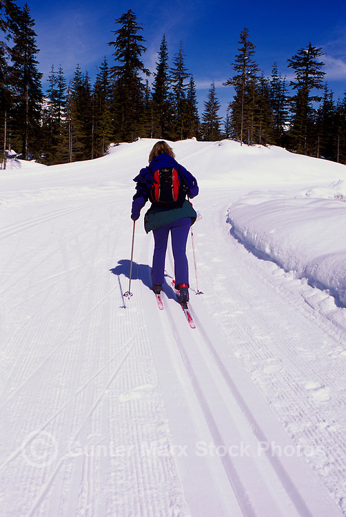 Cross Country Skier skiing on Groomed Ski Tracks at Whistler Olympic Park - Site of Vancouver 2010 Winter Games British Columbia Canada