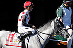 ARLINGTON HEIGHTS, IL - AUGUST 13: World Approval #11, ridden by Florent Geroux, during the post parade before Arlington Million at Arlington International Racecourse on August 13, 2016 in Arlington Heights, Illinois. (Photo by Jon Durr/Eclipse Sportswire/Getty Images)