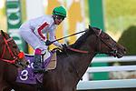 RIYADH,SAUDI ARABIA-FEB 28: Matmon,ridden by Lisa Allpress,wins the 1st leg of International Jockeys Challenge at King Abdulaziz Racetrack on February 28,2020 in Riyadh,Saudi Arabia. Kaz Ishida/Eclipse Sportswire/CSM