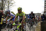 The peloton enter the Molenberg climb during the 96th edition of The Tour of Flanders 2012, running 256.9km from Bruges to Oudenaarde, Belgium. 1st April 2012. <br /> (Photo by Steven Franzoni/NEWSFILE).