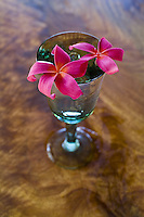 """Plumeria flowers on mango wood table. Plumeria, or """"""""frangipani"""""""" is a fragrant blossom deeply tied to Hawaii and its culture."""
