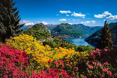 Schweiz, Tessin, Carona: Botanischer Park San Grato mit Blick auf den Luganer See   Switzerland, Ticino, Carona: Botanical Park San Grato with view at Lake Lugano