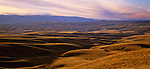 Tussock covered hills at sunset in the Roxborough area of the  Otago Region. New Zealand.