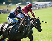 10/14/2017 - Virginia Fall Races (Middleburg)