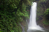 The La Paz river and the Magia Blanca Falls along the trails at the La Paz Waterfall Gardens and Peace Lodge, Costa Rica