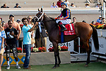 DEL MAR, CA  AUGUST 3: #1 Beau Recall, ridden by Drayden Van Dyke, with the  connections in the winners circle after winning the Yellow Ribbon Handticap (Grade ll) on August 3, 2019, at Del Mar Thoroughbred Club in Del Mar, CA..  (Photo by Casey Phillips/Eclipse Sportswire/CSM)