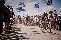 Daryl Impey (ZAF/Mitchelton-Scott) on pavé sector #4<br /> <br /> Stage 9: Arras Citadelle > Roubaix (154km)<br /> <br /> 105th Tour de France 2018<br /> ©kramon