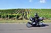 schwarzgekleideter Motorradfahrer vor Weinberg im Sommer