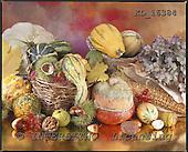 Interlitho, STILL LIFES, photos+++++,pumpkins,KL16384,#I# Stilleben, naturaleza muerta