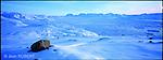 banquise à côté de Tiniteqilaq. Groënland (côte Est). Région d'Angmagssalik (Ammasalik ou Tassilaq). .. the ice floe nearby Tiniteqilaq Greenland (East coast).