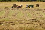 Farming: Harvesting