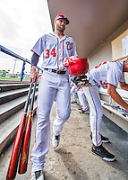 13 March 2016: Washington Nationals outfielder Bryce Harper walks down the dugout prior to a pre-season Spring Training game against the St. Louis Cardinals at Space Coast Stadium in Viera, Florida. The teams played to a 4-4 draw in Grapefruit League play. Mandatory Credit: Ed Wolfstein Photo *** RAW (NEF) Image File Available ***
