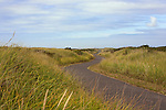 Westhaven State Park's sand and dunes are popular with beachcombers and surfers alike.  Located adjacent to the city of Westport.  The south jetty of Grays Harbor marks the north beach area.