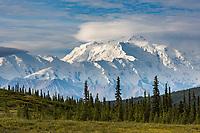 Mt. Denali, North America's tallest peak. Denali National Park.