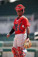 Boston Red Sox catcher Roldani Baldwin (43) during an Instructional League game against the Minnesota Twins on September 23, 2016 at JetBlue Park at Fenway South in Fort Myers, Florida.  (Mike Janes/Four Seam Images)